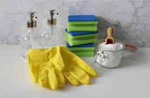 Cleaning utensils, soap, spray & gloves