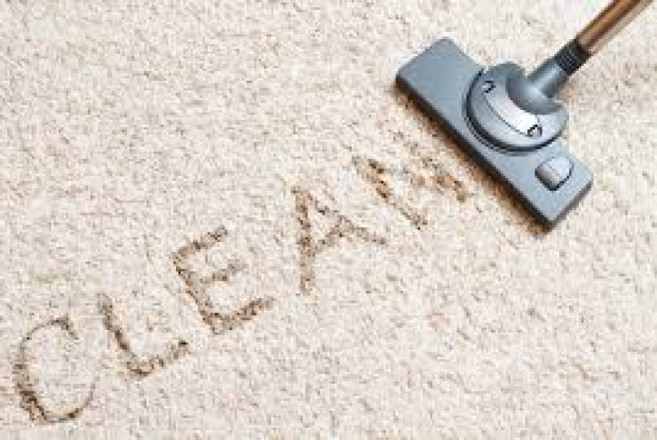 How To Clean a Carpet Like a Professional